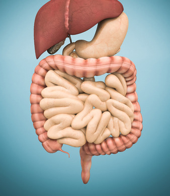 Cancer gastrointestinal
